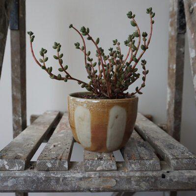 Bridie Maddocks Woodfired Ceramic Plant Pot With Orange Glaze