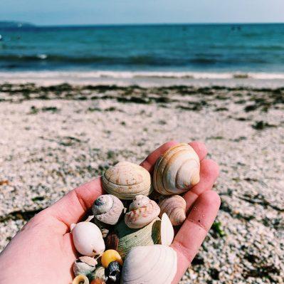 Lowenna Designs Beachcombing Finds