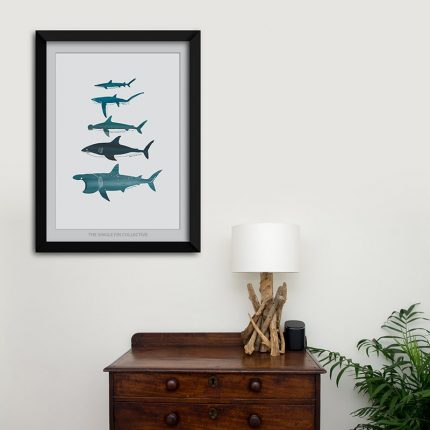 Digital illustration print of different type of Sharks shown framed on a wall in a room by Single Fin Collective
