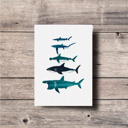 Digital illustration print of different type of Sharks by Single Fin Collective