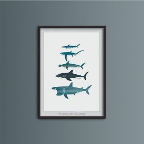 Digital Illustration Print Of Different Type Of Sharks Shown Framed By Single Fin Collective